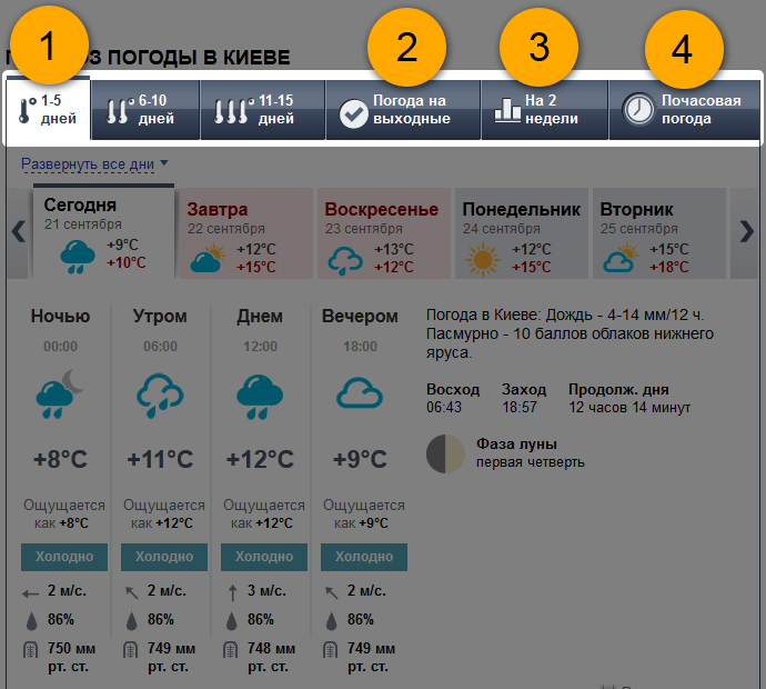 Почасовая погода поможет